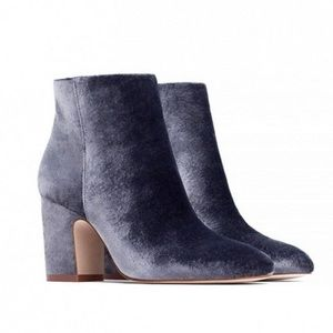 Zara Purple Velvet Booties